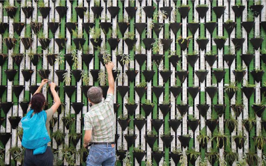 NIS ljudi ispred zida sa biljkama - održivi razvoj